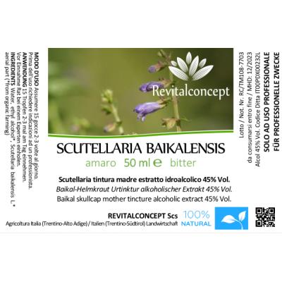 SCUTELLARIA BAIKALENSIS