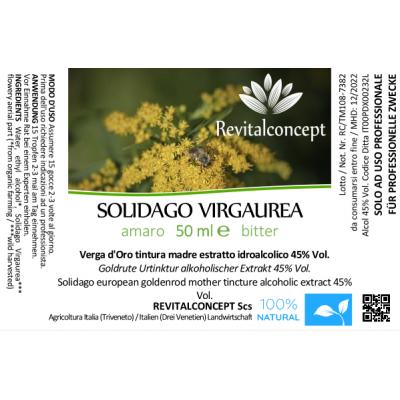 SOLIDAGO VIRGAUREA