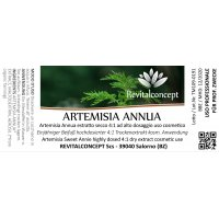 Artemisia Sweet Annie...